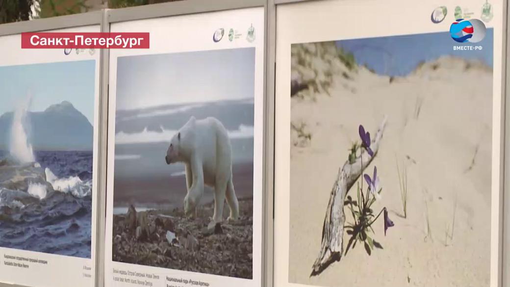 Путин: Невский международный экологический съезд заслужил высокий авторитет