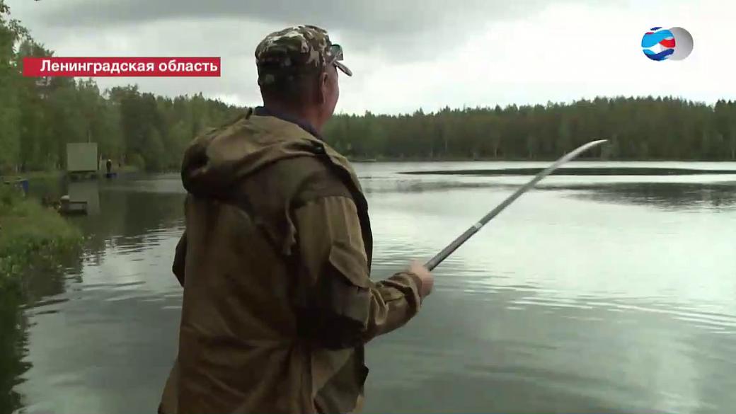 рыбалка на запад ленинградской области с берега