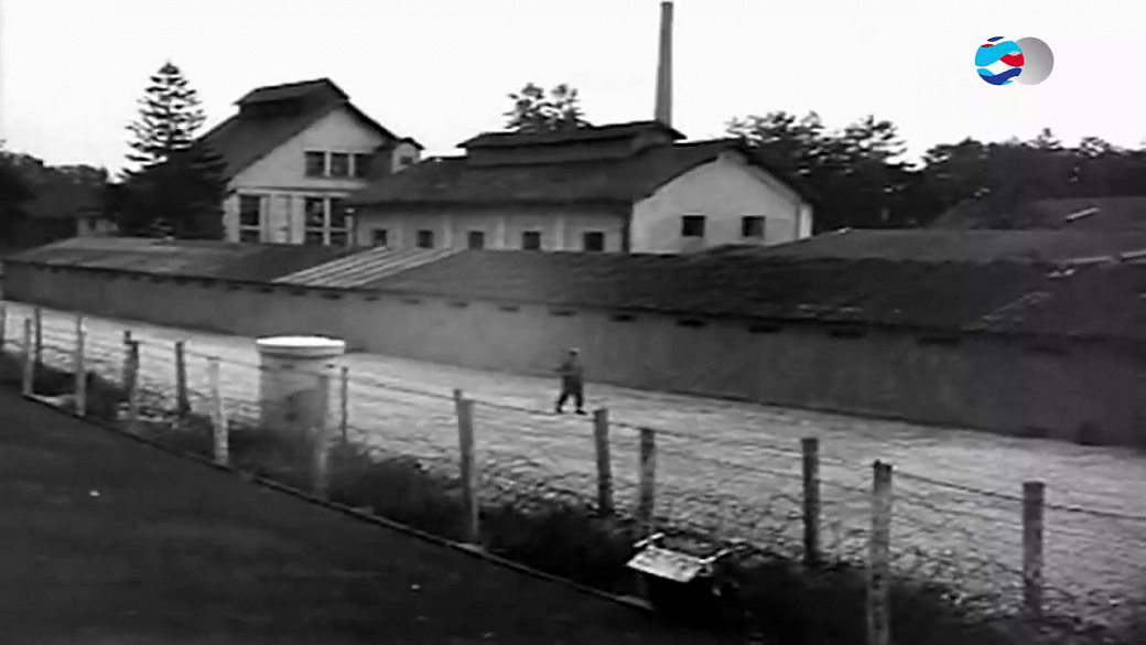 Local video
